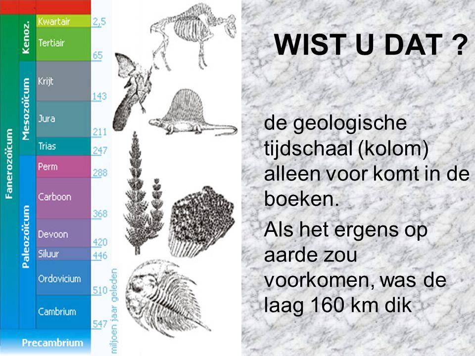 WIST U DAT .de geologische tijdschaal (kolom) alleen voor komt in de boeken.