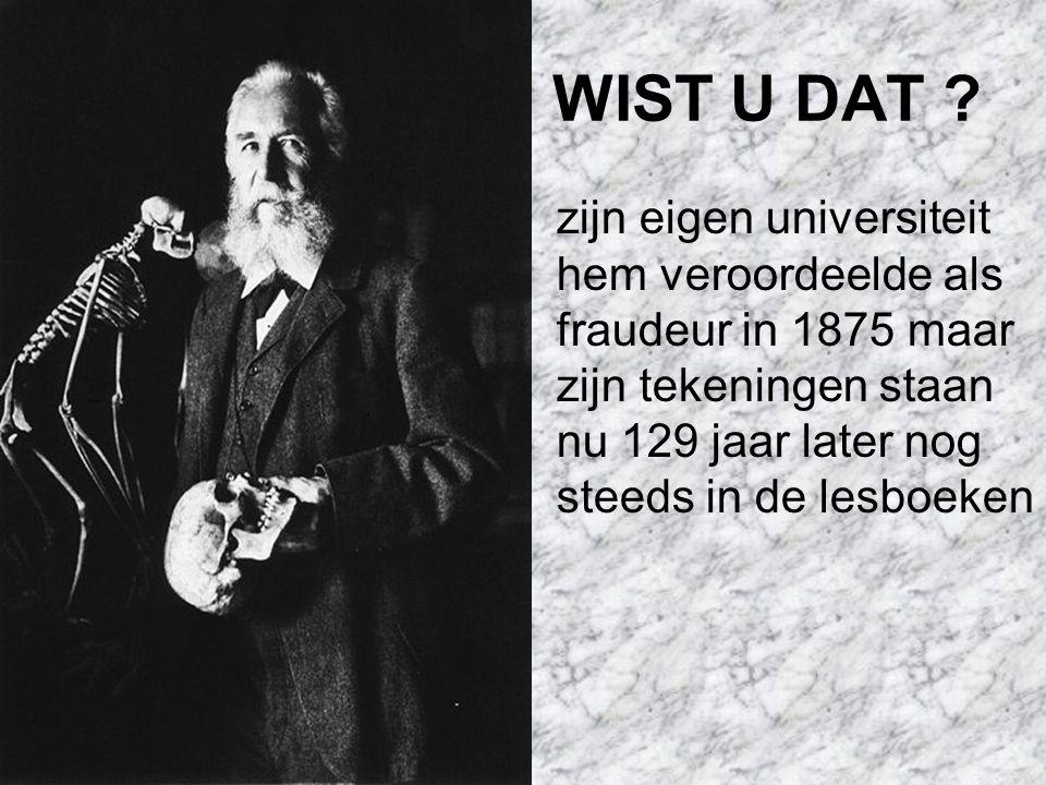 WIST U DAT .