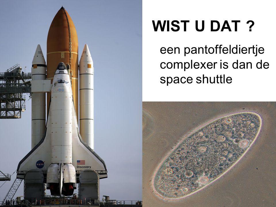 WIST U DAT ? een pantoffeldiertje complexer is dan de space shuttle