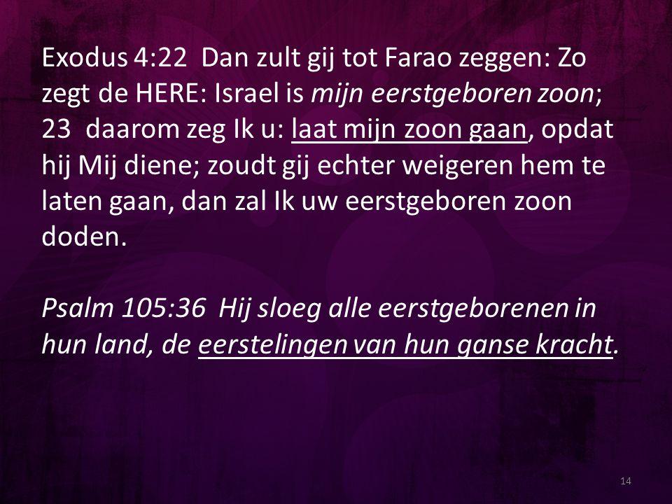 14 Exodus 4:22 Dan zult gij tot Farao zeggen: Zo zegt de HERE: Israel is mijn eerstgeboren zoon; 23 daarom zeg Ik u: laat mijn zoon gaan, opdat hij Mi