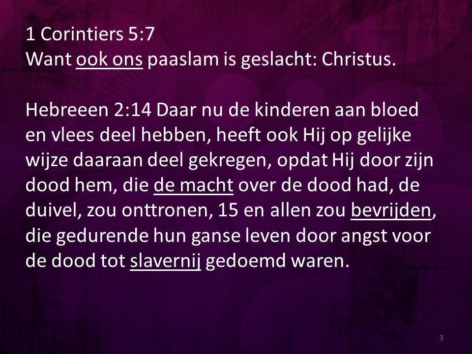 3 1 Corintiers 5:7 Want ook ons paaslam is geslacht: Christus. Hebreeen 2:14 Daar nu de kinderen aan bloed en vlees deel hebben, heeft ook Hij op geli