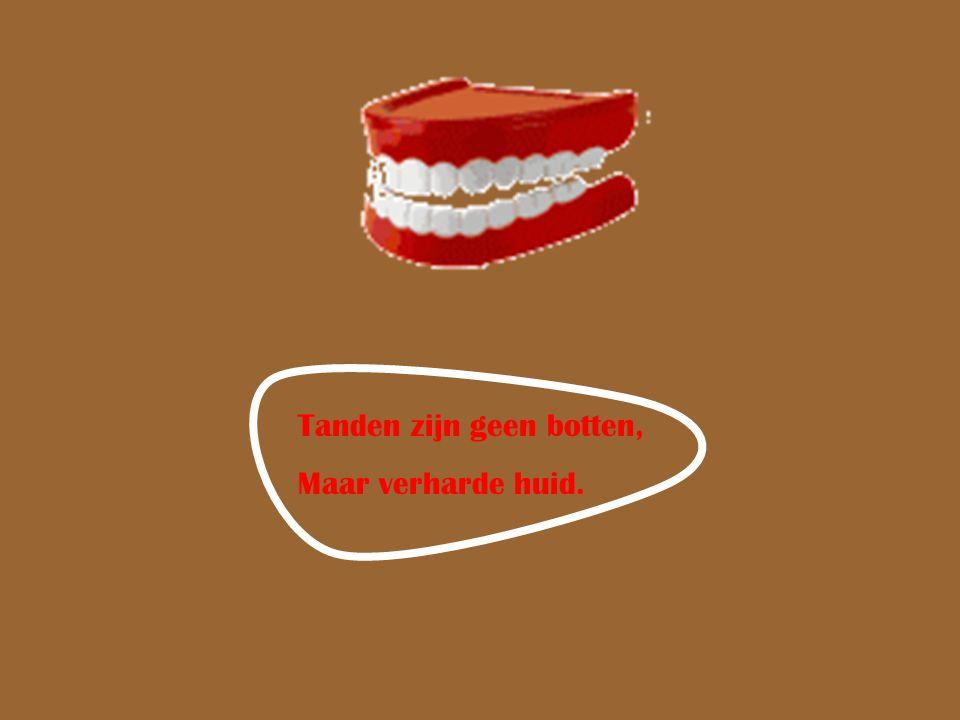 Tanden zijn geen botten, Maar verharde huid.
