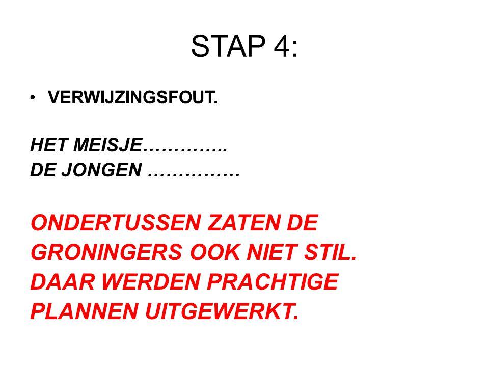 STAP 4: VERWIJZINGSFOUT. HET MEISJE………….. DE JONGEN …………… ONDERTUSSEN ZATEN DE GRONINGERS OOK NIET STIL. DAAR WERDEN PRACHTIGE PLANNEN UITGEWERKT.