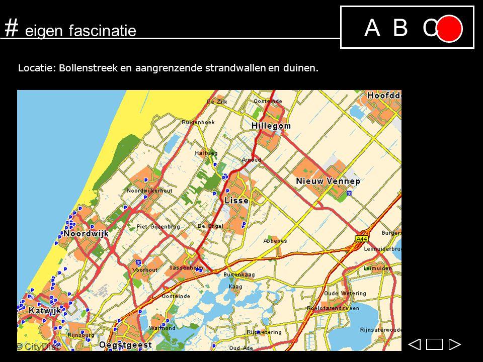 A B C# eigen fascinatie Locatie: Bollenstreek en aangrenzende strandwallen en duinen.