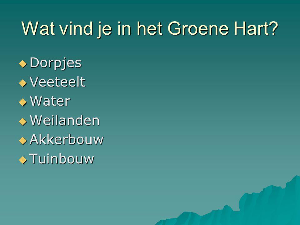 Wat vind je in het Groene Hart?  Dorpjes  Veeteelt  Water  Weilanden  Akkerbouw  Tuinbouw