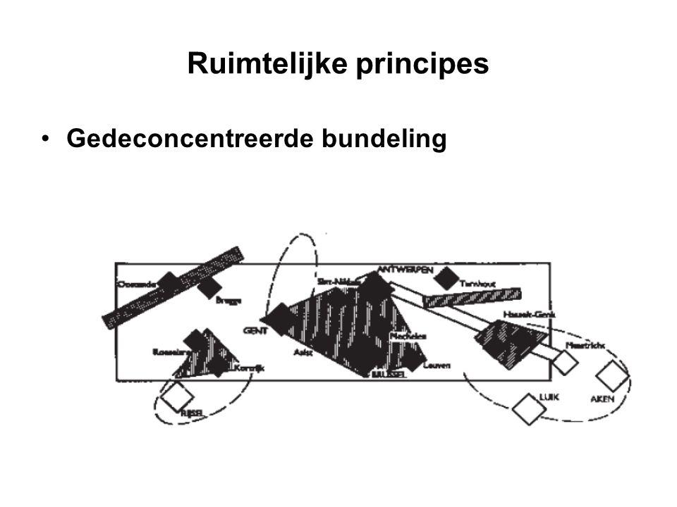 Ruimtelijke principes Gedeconcentreerde bundeling