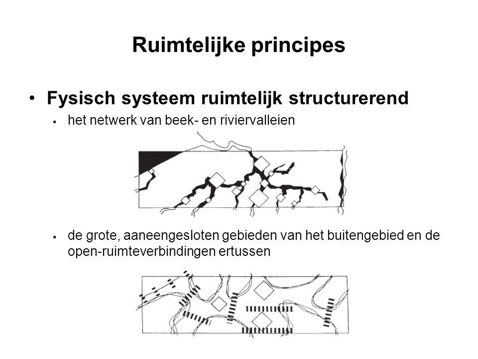 Ruimtelijke principes Fysisch systeem ruimtelijk structurerend  het netwerk van beek- en riviervalleien  de grote, aaneengesloten gebieden van het b