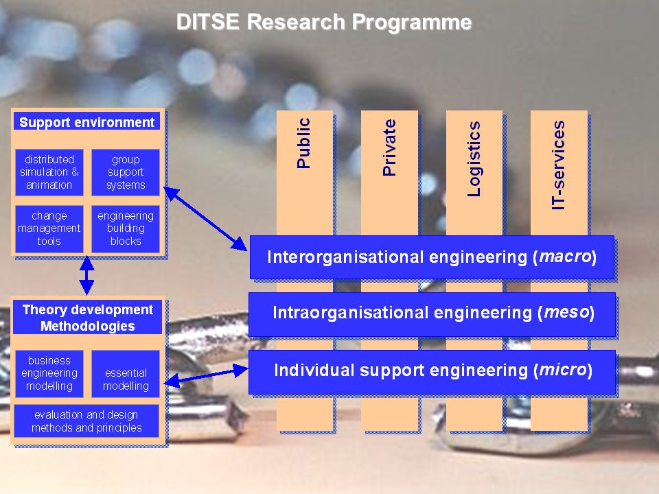DITSE Research Programme