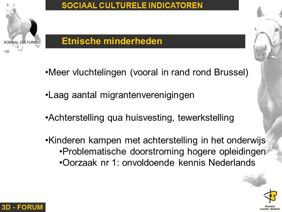 3D - FORUM SOCIAAL CULTURELE INDICATOREN Etnische minderheden Meer vluchtelingen (vooral in rand rond Brussel) Laag aantal migrantenverenigingen Achte