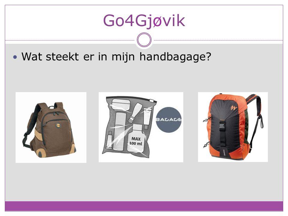 Go4Gjøvik Wat steekt er in mijn handbagage