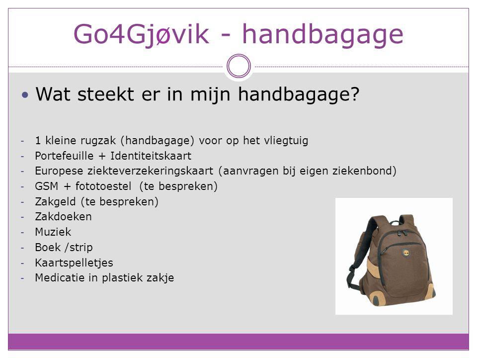 Go4Gjøvik - handbagage Wat steekt er in mijn handbagage.