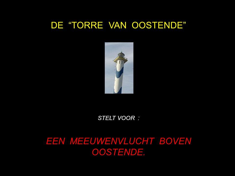 DE TORRE VAN OOSTENDE STELT VOOR : EEN MEEUWENVLUCHT BOVEN OOSTENDE.