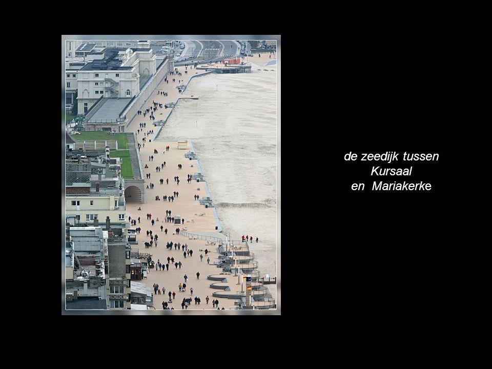 een meeuw scheert over Oostende…