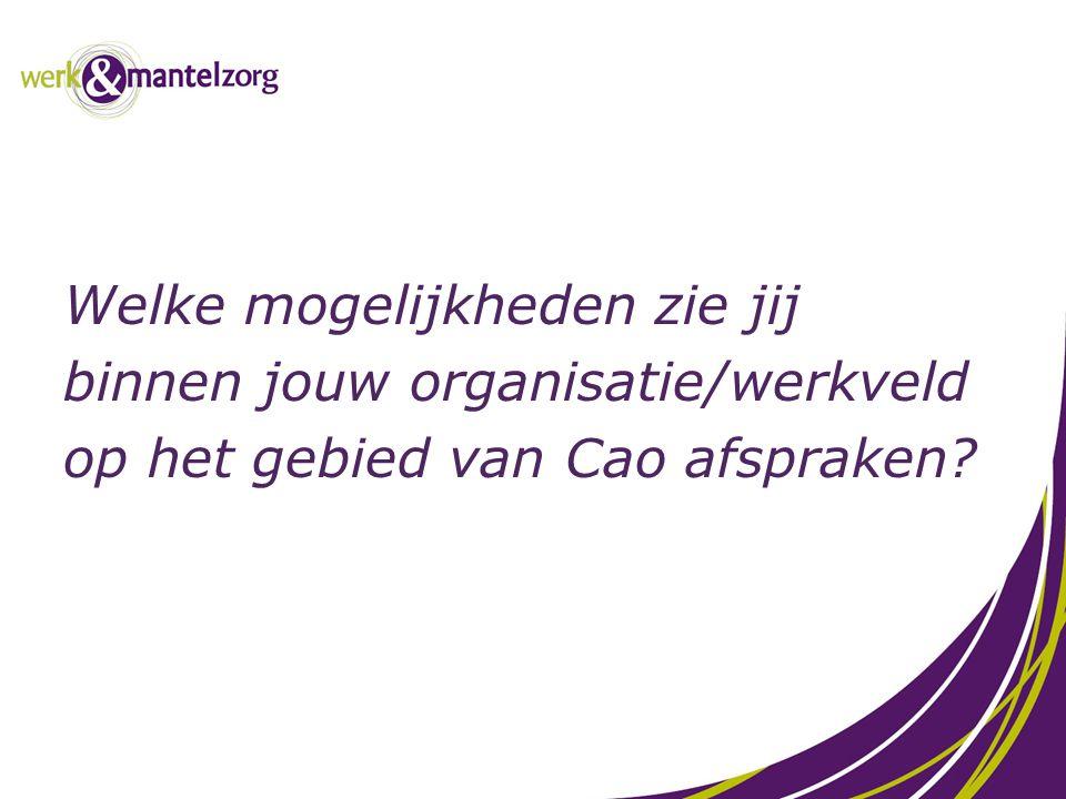 Welke mogelijkheden zie jij binnen jouw organisatie/werkveld op het gebied van Cao afspraken?