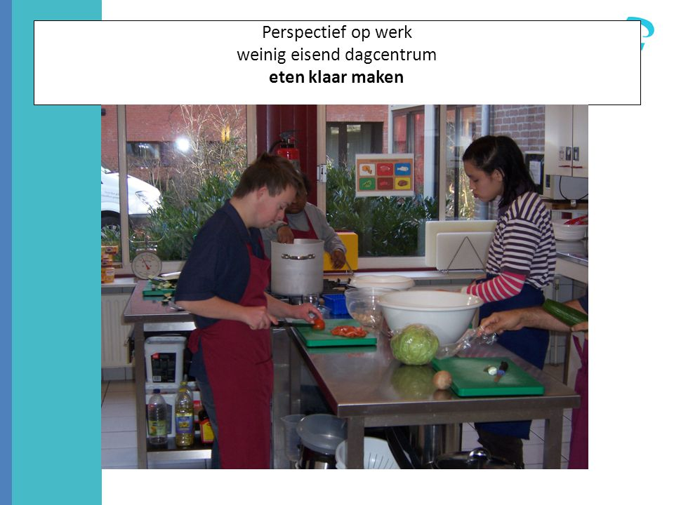 Perspectief op werk weinig eisend dagcentrum eten klaar maken