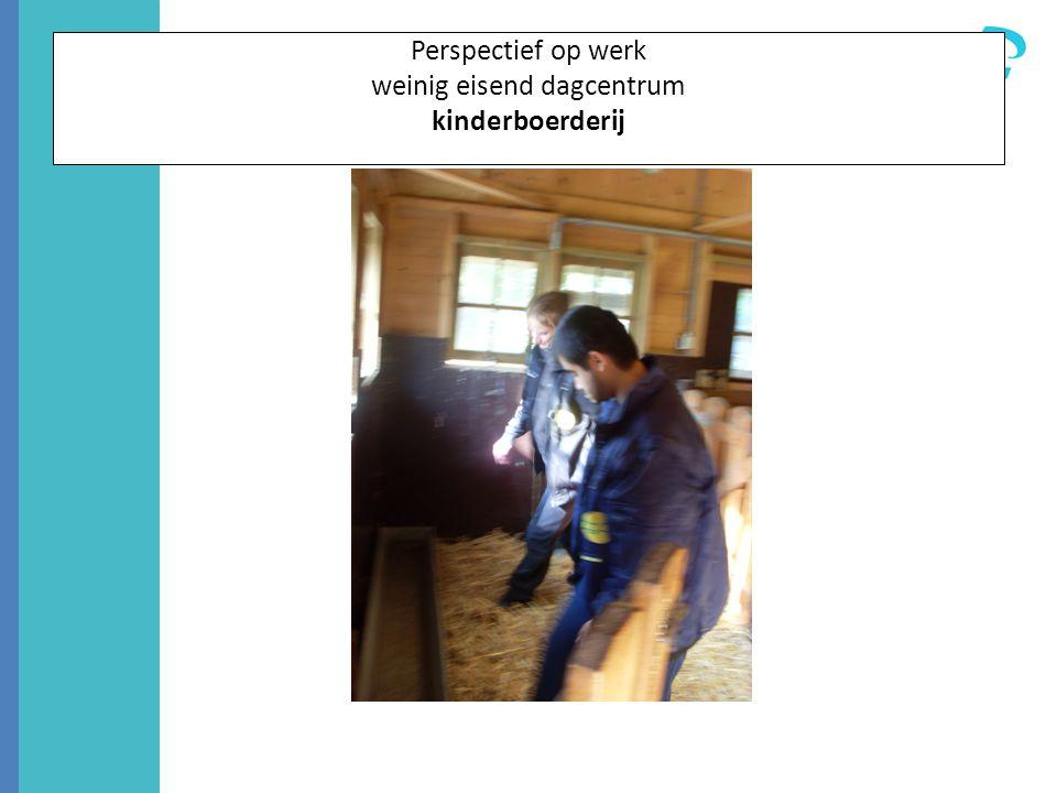 Perspectief op werk weinig eisend dagcentrum kinderboerderij