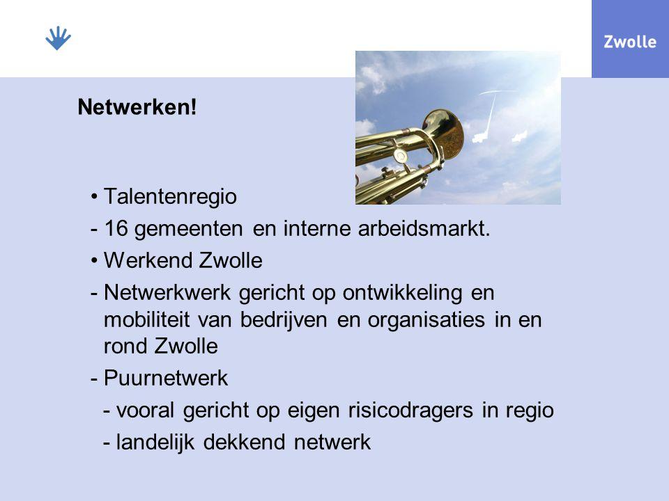 Netwerken! Talentenregio -16 gemeenten en interne arbeidsmarkt. Werkend Zwolle -Netwerkwerk gericht op ontwikkeling en mobiliteit van bedrijven en org