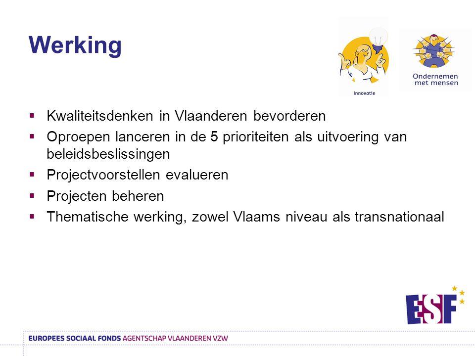 Werking  Kwaliteitsdenken in Vlaanderen bevorderen  Oproepen lanceren in de 5 prioriteiten als uitvoering van beleidsbeslissingen  Projectvoorstellen evalueren  Projecten beheren  Thematische werking, zowel Vlaams niveau als transnationaal