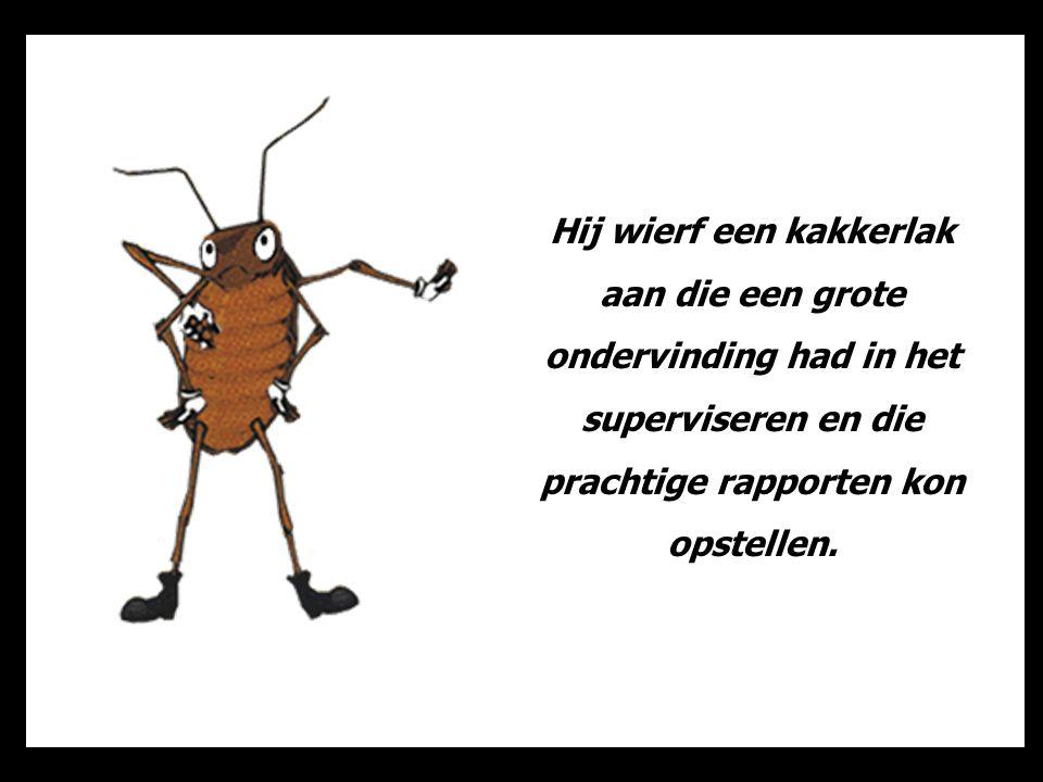 Deze nieuwe verantwoordelijke had ook een computer nodig en een assistente om een strategisch plan uit te werken om het werk te optimaliseren en het budget betreffende de dienst van de mier te controleren.