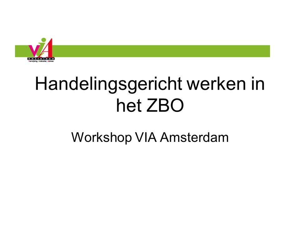 Handelingsgericht werken in het ZBO Workshop VIA Amsterdam