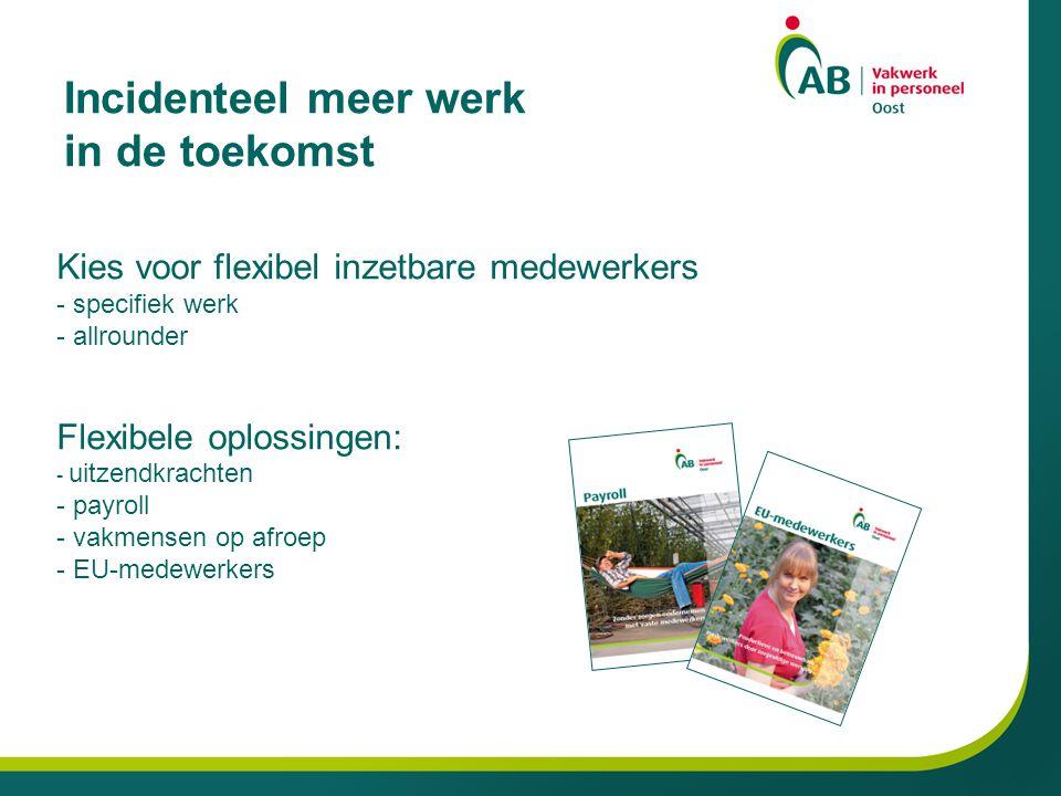 Incidenteel meer werk in de toekomst Kies voor flexibel inzetbare medewerkers - specifiek werk - allrounder Flexibele oplossingen: - uitzendkrachten - payroll - vakmensen op afroep - EU-medewerkers