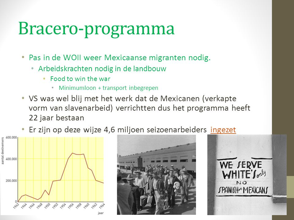 Bracero-programma Pas in de WOII weer Mexicaanse migranten nodig. Arbeidskrachten nodig in de landbouw Food to win the war Minimumloon + transport inb