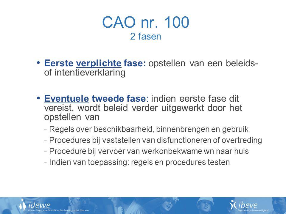 CAO nr. 100 2 fasen Eerste verplichte fase: opstellen van een beleids- of intentieverklaring Eventuele tweede fase: indien eerste fase dit vereist, wo