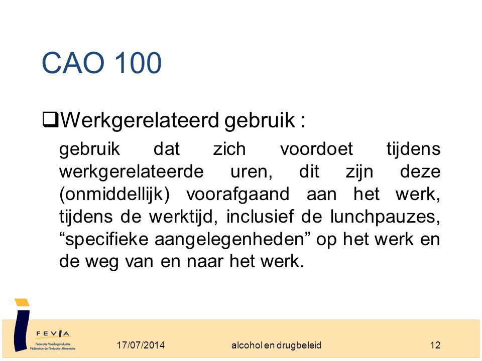 CAO 100  Werkgerelateerd gebruik : gebruik dat zich voordoet tijdens werkgerelateerde uren, dit zijn deze (onmiddellijk) voorafgaand aan het werk, tijdens de werktijd, inclusief de lunchpauzes, specifieke aangelegenheden op het werk en de weg van en naar het werk.