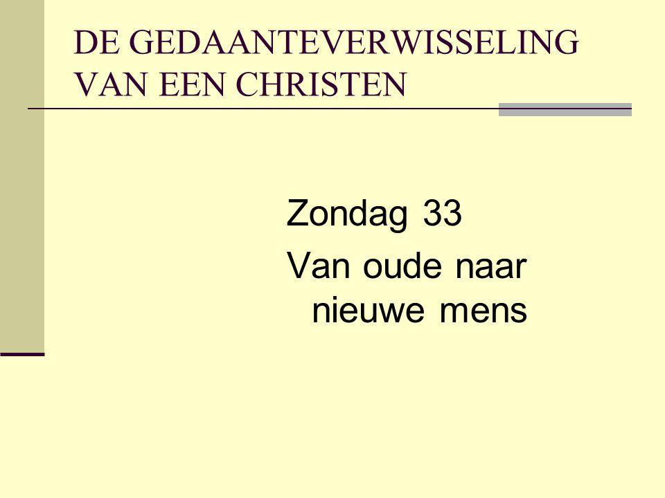 DE GEDAANTEVERWISSELING VAN EEN CHRISTEN Zondag 33 Van oude naar nieuwe mens