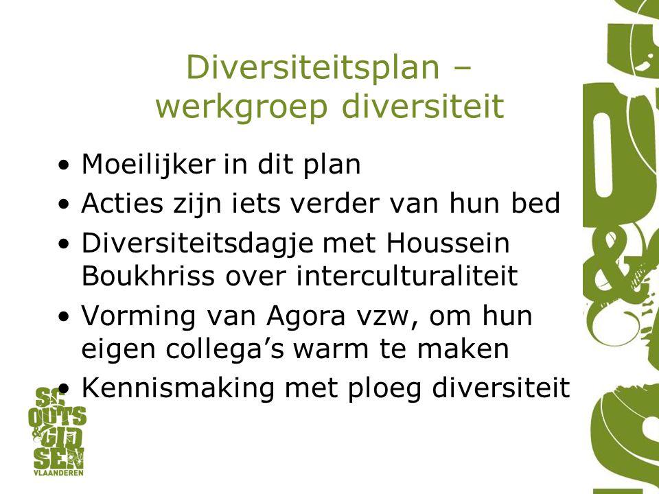 Diversiteitsplan – werkgroep diversiteit Moeilijker in dit plan Acties zijn iets verder van hun bed Diversiteitsdagje met Houssein Boukhriss over inte