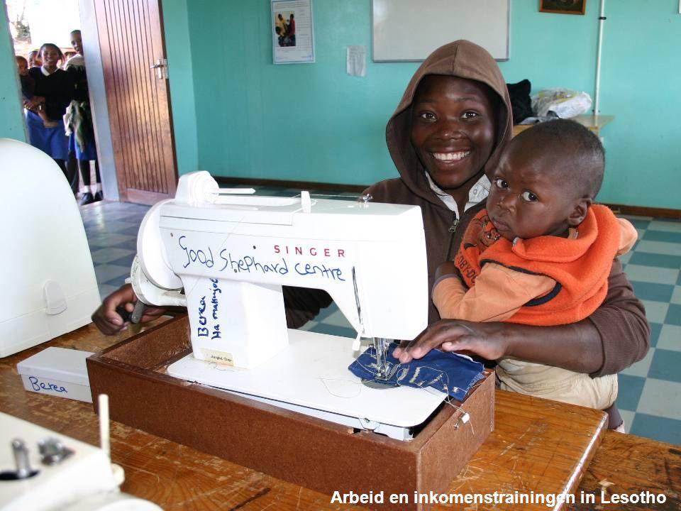 Een greep uit de projecten van Dorcas Arbeid en inkomenstrainingen in Lesotho