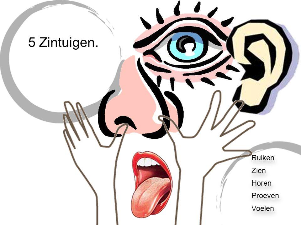 Blind of doof?! Hoe ervaar je het als je opeens niet meer kunt zien of horen? Experiment