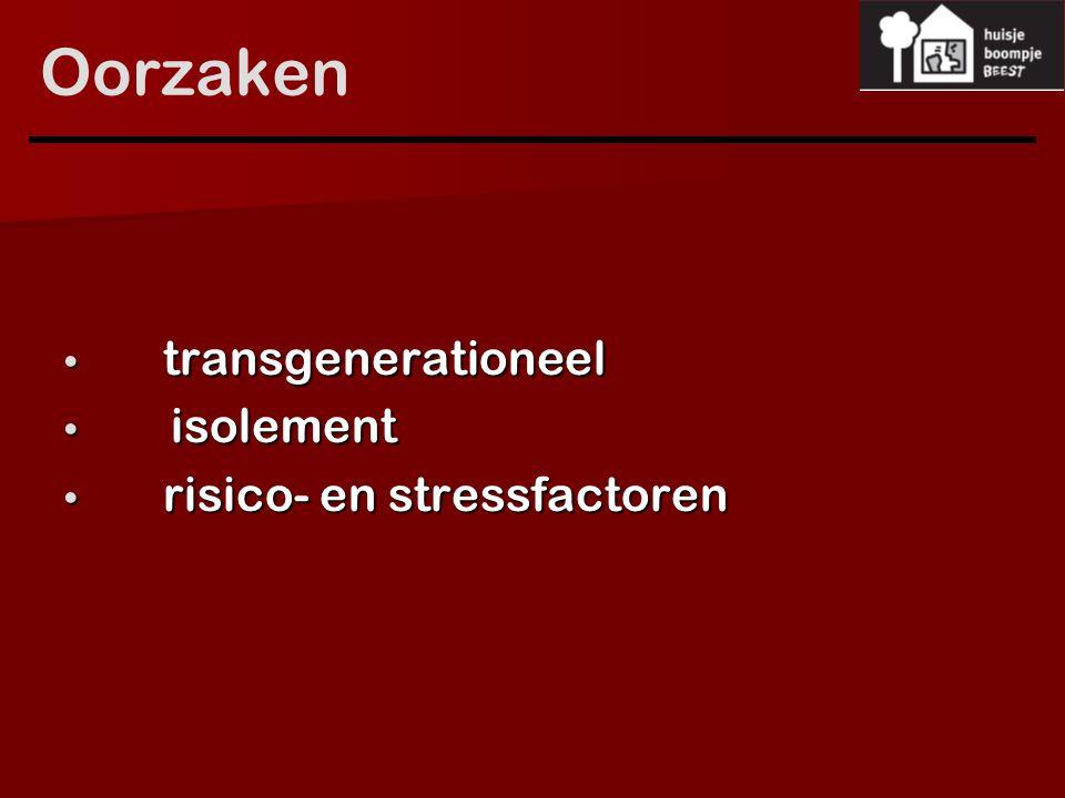 Oorzaken transgenerationeel transgenerationeel isolement isolement risico- en stressfactoren risico- en stressfactoren