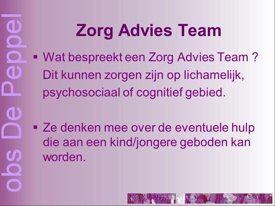 Zorg Advies Team  Wat bespreekt een Zorg Advies Team .