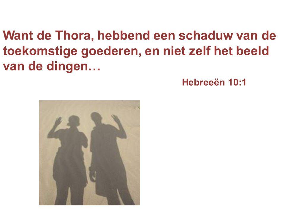 Want de Thora, hebbend een schaduw van de toekomstige goederen, en niet zelf het beeld van de dingen… Hebreeën 10:1