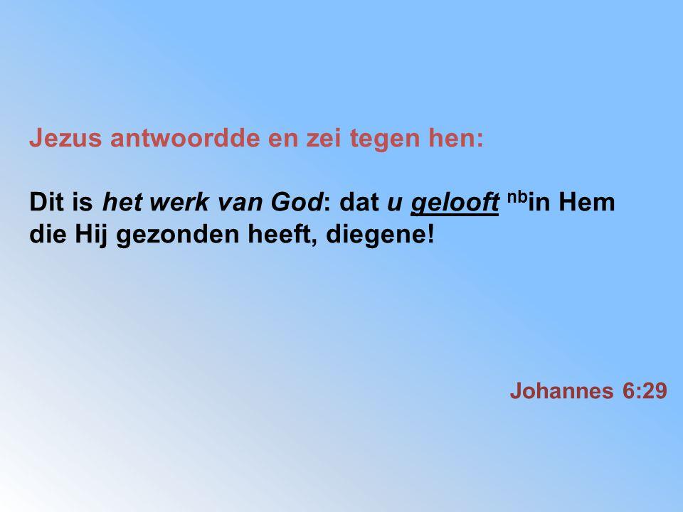 Jezus antwoordde en zei tegen hen: Dit is het werk van God: dat u gelooft nb in Hem die Hij gezonden heeft, diegene! Johannes 6:29