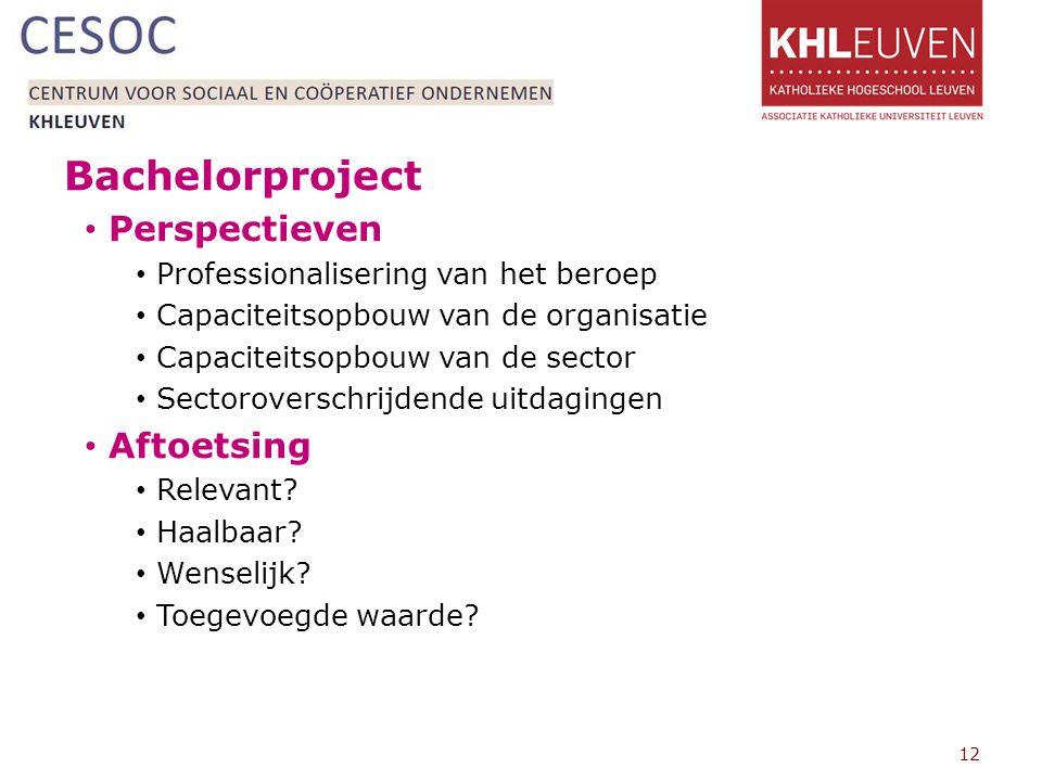 Bachelorproject Perspectieven Professionalisering van het beroep Capaciteitsopbouw van de organisatie Capaciteitsopbouw van de sector Sectoroverschrijdende uitdagingen Aftoetsing Relevant.