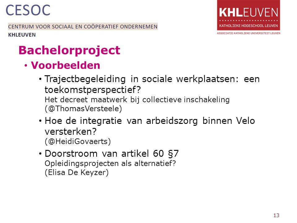 Bachelorproject Voorbeelden Trajectbegeleiding in sociale werkplaatsen: een toekomstperspectief.