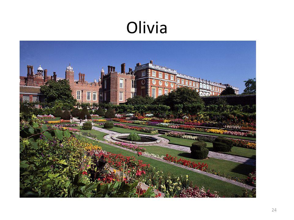 Olivia 24
