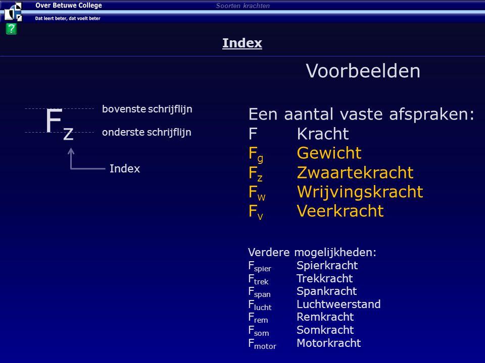 Index Index FzFz onderste schrijflijn bovenste schrijflijn Index Voorbeelden Een aantal vaste afspraken: FKracht F g Gewicht F z Zwaartekracht F w Wri