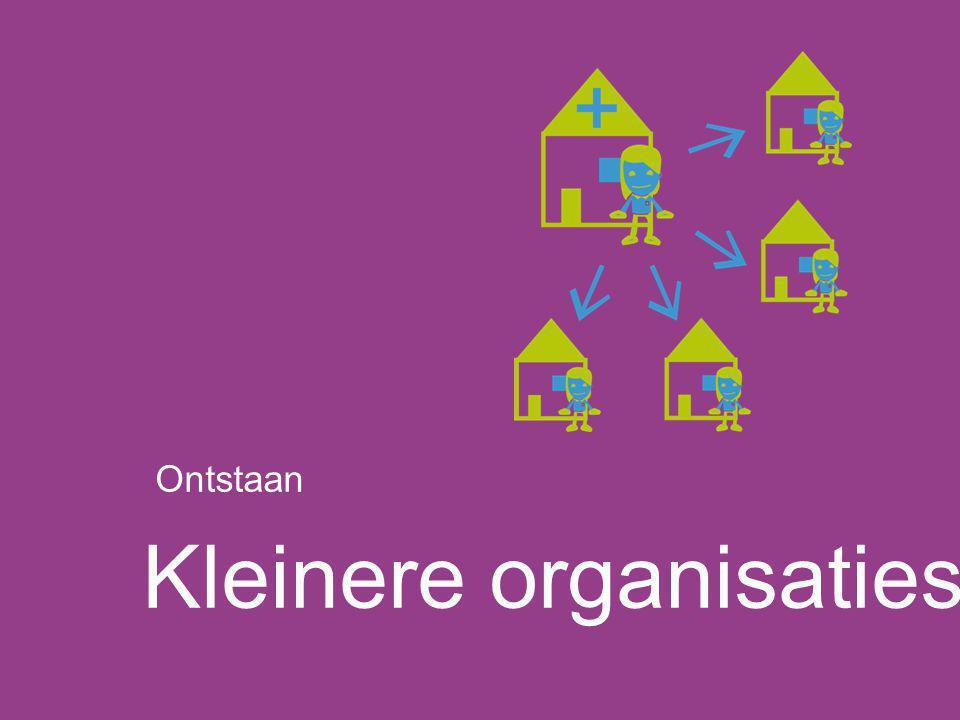 Kleinere organisaties Ontstaan