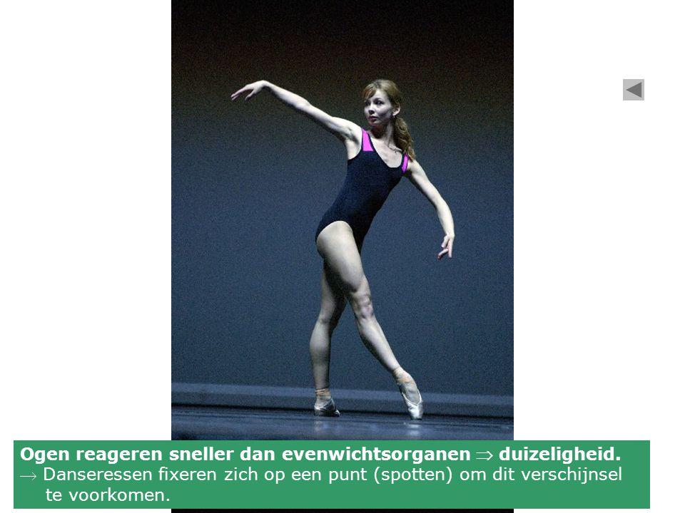 Ogen reageren sneller dan evenwichtsorganen  duizeligheid.  Danseressen fixeren zich op een punt (spotten) om dit verschijnsel te voorkomen.