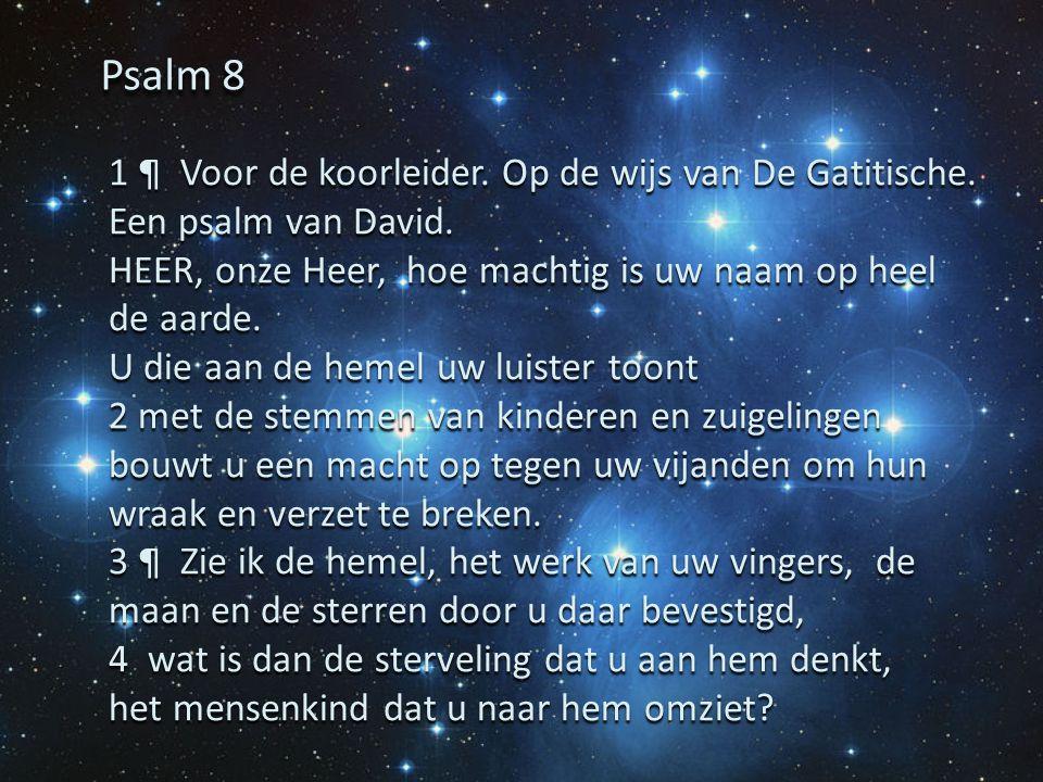 1 ¶ Voor de koorleider. Op de wijs van De Gatitische. Een psalm van David. HEER, onze Heer, hoe machtig is uw naam op heel de aarde. U die aan de heme