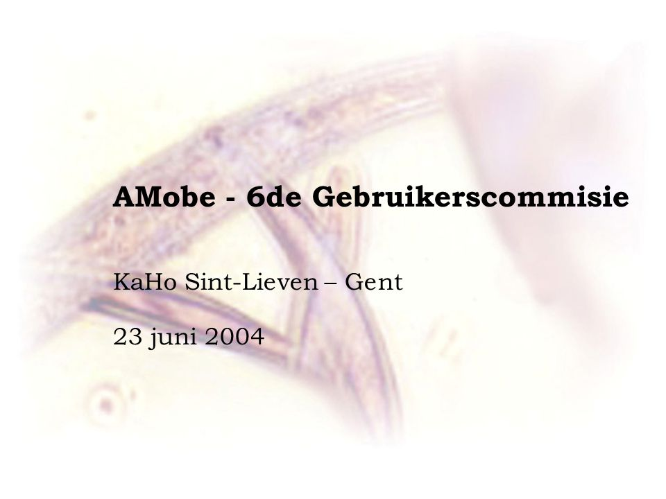 AMobe - 6de Gebruikerscommisie KaHo Sint-Lieven – Gent 23 juni 2004