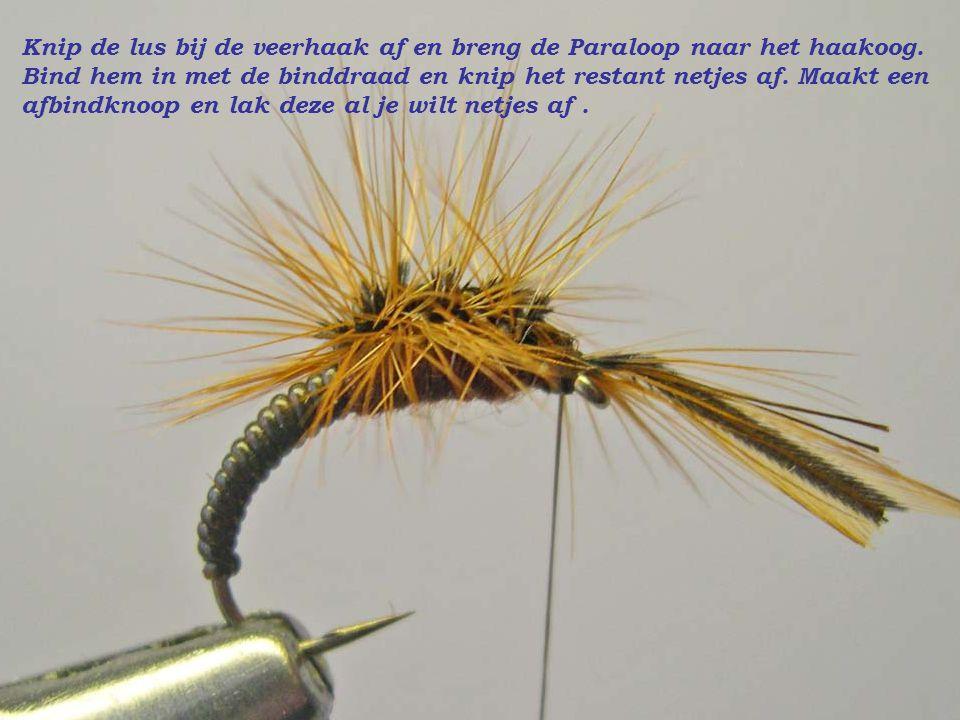 Knip de lus bij de veerhaak af en breng de Paraloop naar het haakoog. Bind hem in met de binddraad en knip het restant netjes af. Maakt een afbindknoo