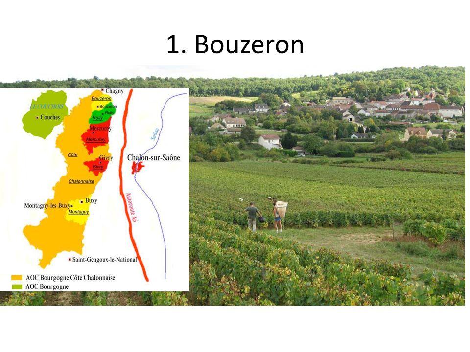 1. Bouzeron