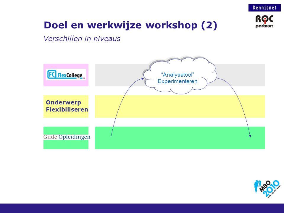 """Doel en werkwijze workshop (2) Verschillen in niveaus """"Analysetool"""" Experimenteren Onderwerp Flexibiliseren"""