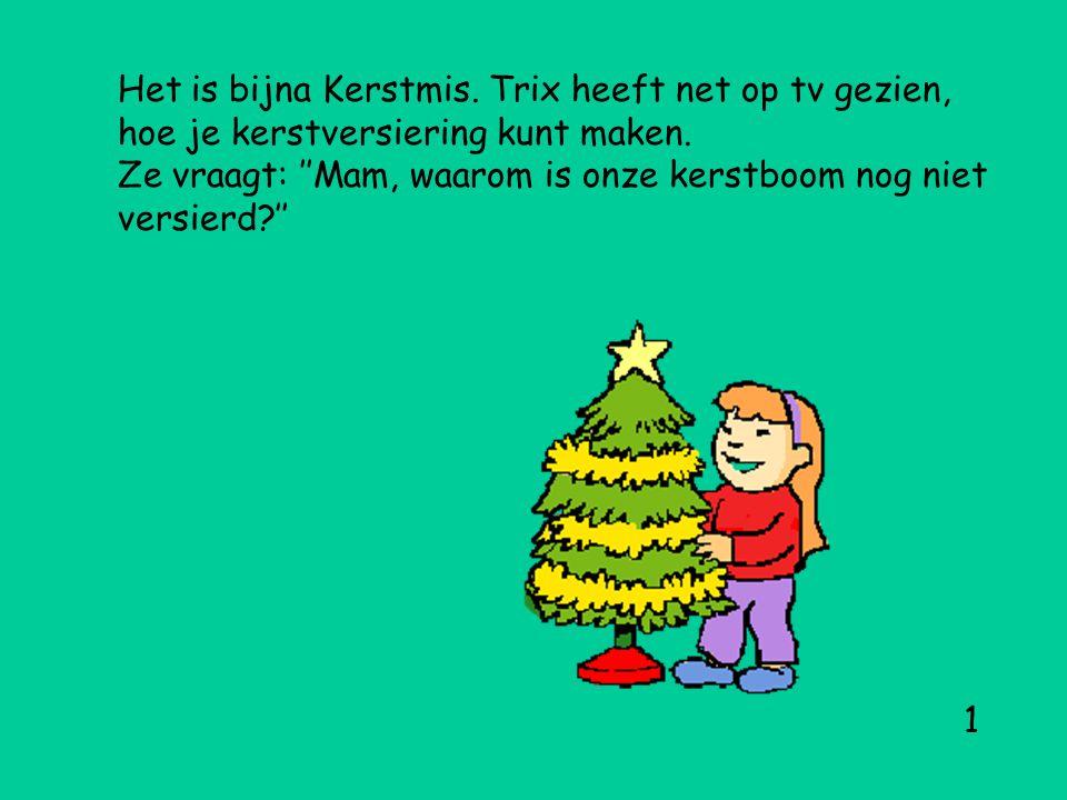 Het is bijna Kerstmis.Trix heeft net op tv gezien, hoe je kerstversiering kunt maken.