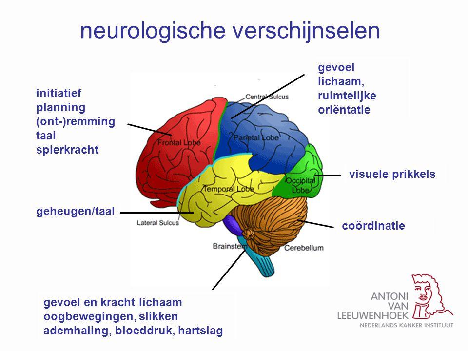 neurologische verschijnselen initiatief planning (ont-)remming taal spierkracht gevoel lichaam, ruimtelijke oriëntatie visuele prikkelscoördinatie gev