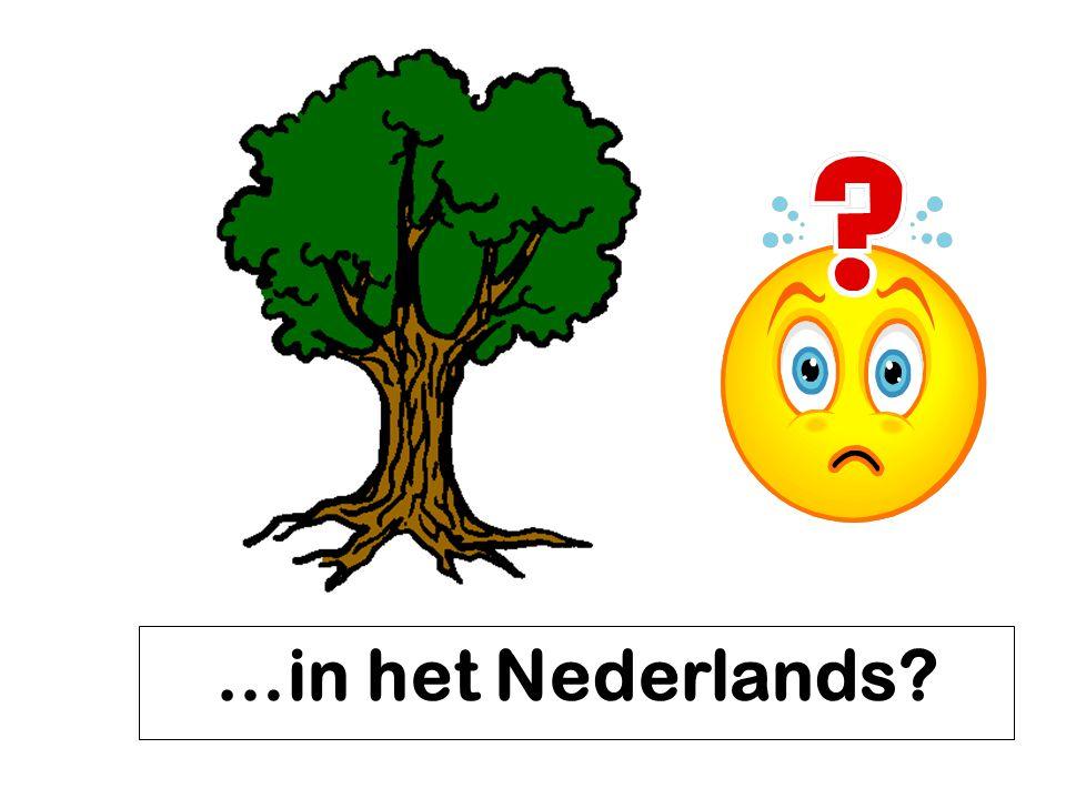 …in het Nederlands?